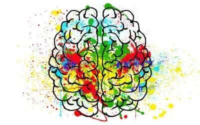 """The """"Beginner's Mind"""""""